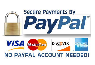 PayPal Payment Pro - Secure Payments